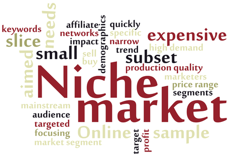 How_to_Make_Money_with_Niche_Marketing_-_Tips_for_Making_Money_...